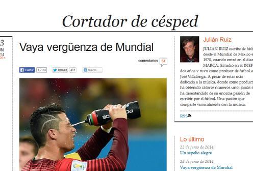 Em seu perfil no site, o jornalista sinaliza que trabalha cobrindo esportes desde o mundial de 1970, realizado no México