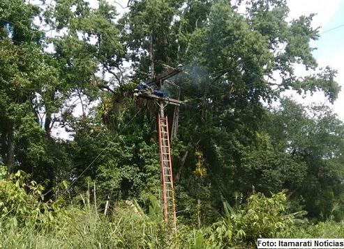 Homem recebeu a descarga elétrica e morreu na parte superior do poste