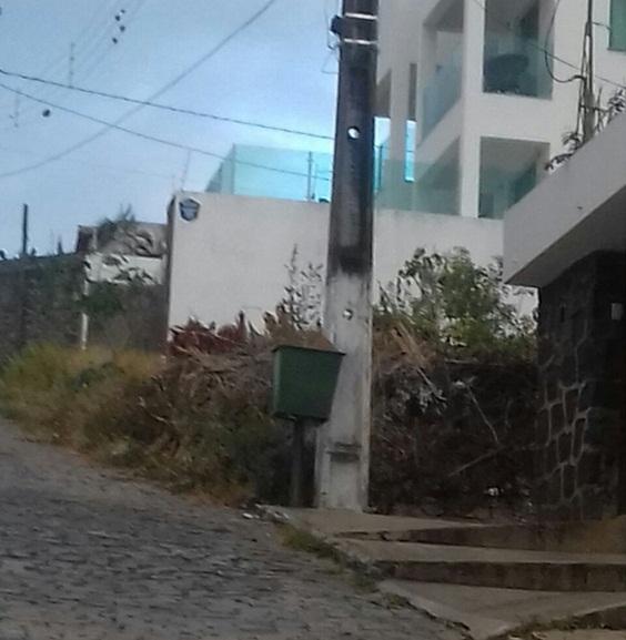 Moradores cobram que Prefeitura exija do proprietário a limpeza do terreno